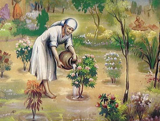 shirdi-saibaba-gardening